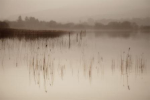 Lough Arrow by John Daly
